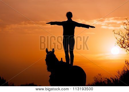 silhouette of a girl standing on a horse on a background of sunset and sunrise.