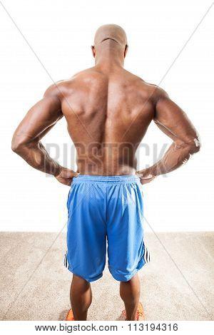 Muscular Mans Back