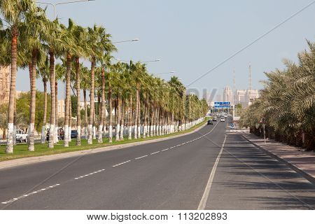 Alley With Palm Trees In Doha, Qatar