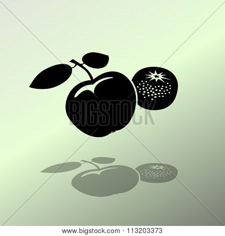 Apple and mandarin icon. Two fruits black silhouette with shadow on light green backdround. Flat des