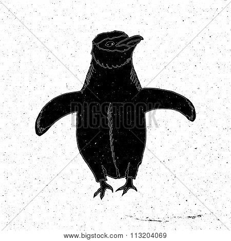 Penguin hand drawn