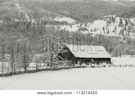 Old Barn In Snowy Pasture.