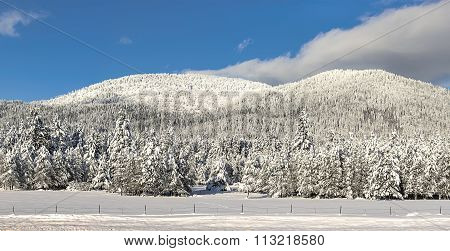 Panorama Of Snow Covered Mountain.