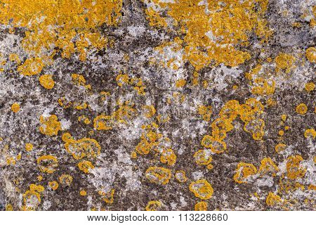Old Abstract Texture Of A Decayed Stone Surface