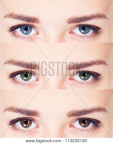 Woman eyes collage