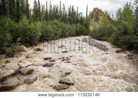 Muddy stream the Denali Alaska in summer after rain storm