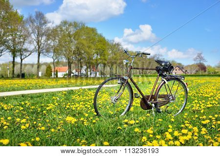 An Old Retro Bicycle In The Dandelion Field. The Netherlands