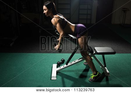 sexy woman doing workout with dumbbells  in gym. lying on the bench coaching triceps