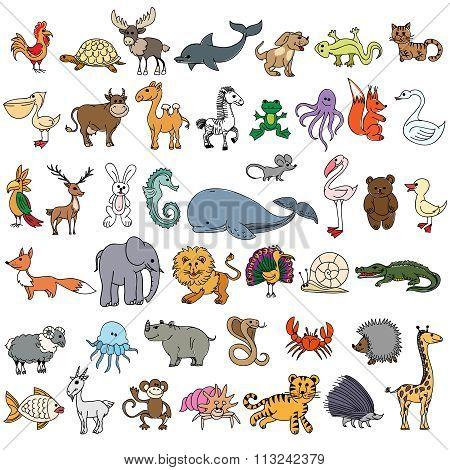 Color doodle animals sketch