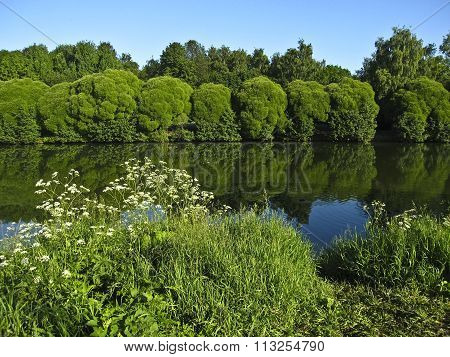 Summer landscape with lake trees around reflection in water. Recorded in Izmaylovskiy park in Moscow.