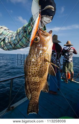 Fisherman Holding A Grouper On Fishing Boat In Andaman, Thailand