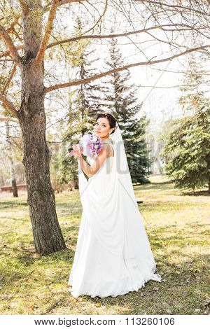 young brunette bride  in the park on nature with a flowing veil.
