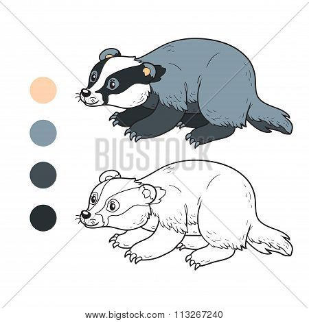 Coloring Book (badger)