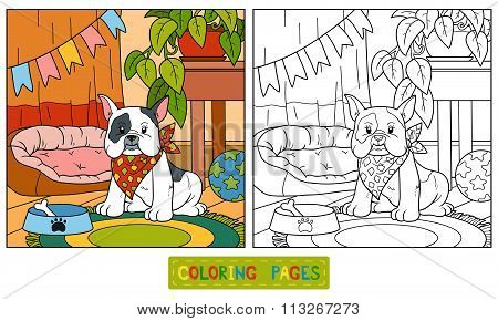 Coloring Book (french Bulldog And Background)