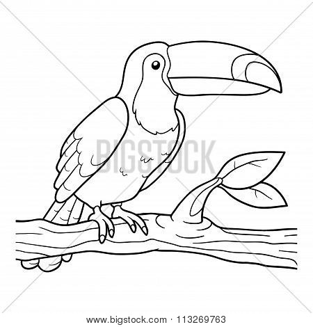 Coloring Book (toucan)
