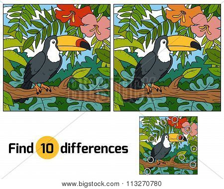 Find Differences, Game For Children (toucan And Background)