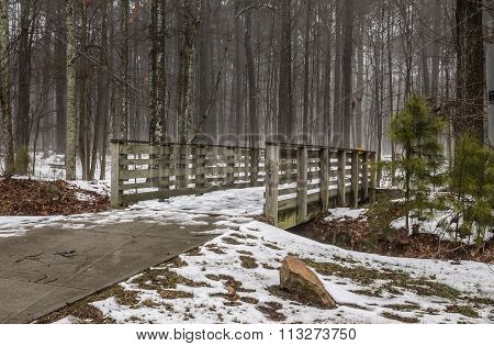 Footbridge to Forest Trail at Stumpy Lake