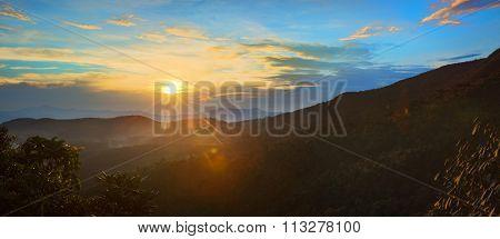 Foggy sunrise at Horton Plains. Panorama