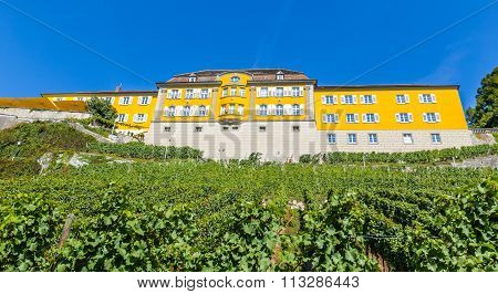 The Wurttemberg States Winery Meersburg-germany