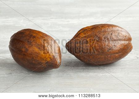 Two fresh ripe cacao fruit