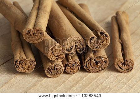 True cinnamon sticks close up