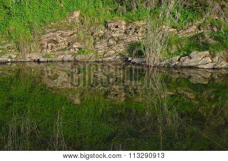 Rocks, vegetation and river