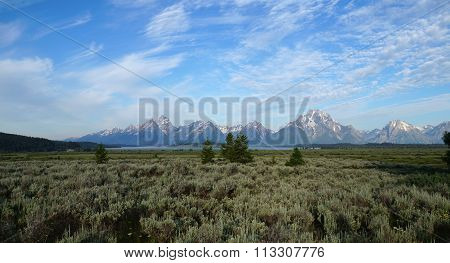 Grand Teton Range protruding from sagebrush and willow plains.