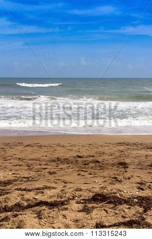 Vertical Scenic Beach And Ocean Landscape