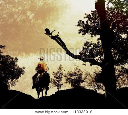 Cowboy riding in the mountains,