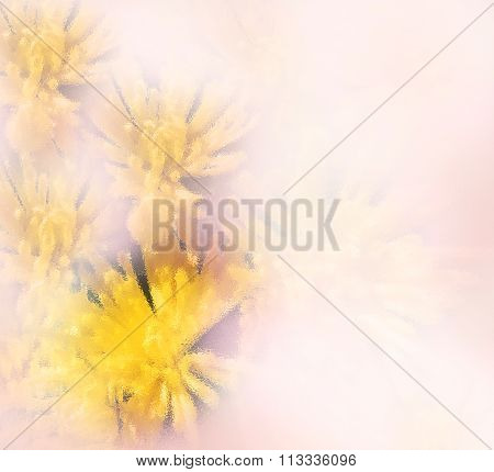Floral Greeting Card With Yellow Chrysanthemums On Pink Grunge Hazed Background