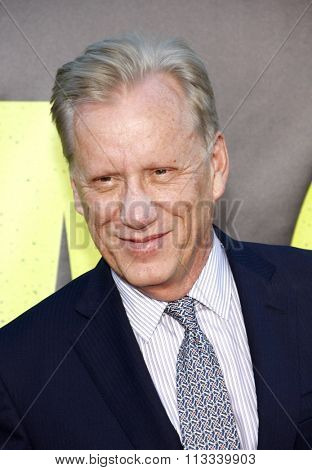 LOS ANGELES, CALIFORNIA - June 25, 2012. James Woods at the Los Angeles premiere of 'Savages' held at the Mann Village Theatre, Los Angeles.