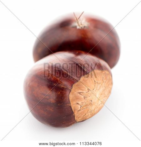 Chestnuts With Shell