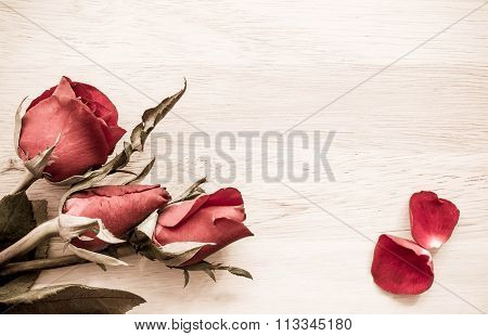 Roses On Wooden Board, Valentines Day Background Vintage Style.