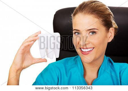 Young female dentist holding tooth model and sitting behind the desk.