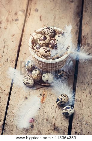 Quail eggs in Easter pot on a wooden table.Eggs scattered on the table and white feathers.