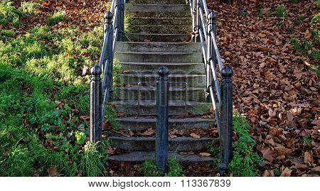 Rustic Steps, Iron Railings, Autumn Leaves