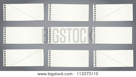 Set of cut notebook papers with lines on gray background