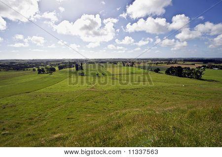 New Zealand Farming Landscape 2