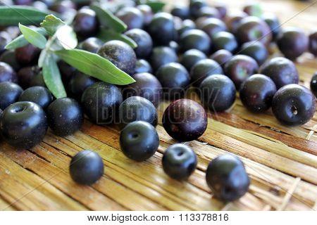 Black Olives 7