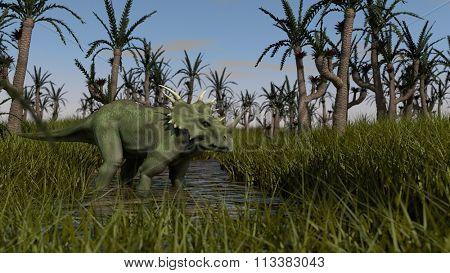 styracosaurus walking in swamp