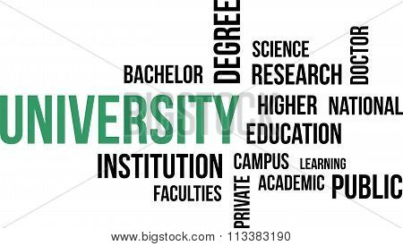 Word Cloud - University