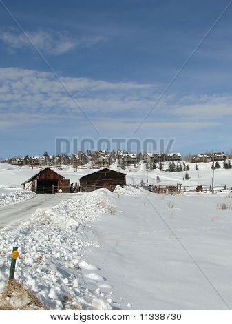 Large Houses After Heavy Snow