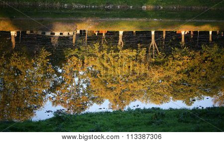 Water Reflection Of Autumn Trees