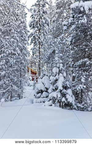 Hardly seen Cottage among the snow covered forest in Ruka in Finland in the Arctic pole circle in winter