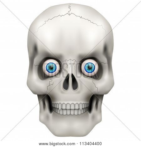 Human skull with open eyes.