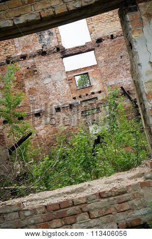 Grunge Abandoned House