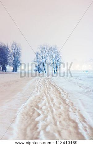 Snow path at night