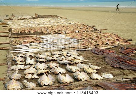 Fish is drying in the sun at the beach