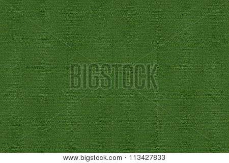 Green Abstract Texture Like Knitted Fabric