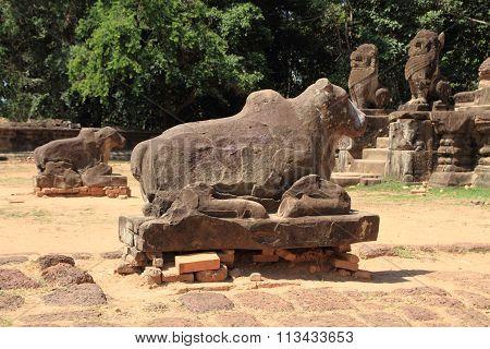 Nandi at Preah Ko in Angkor Siem Reap Cambodia